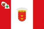 Premium Flaggen mit L