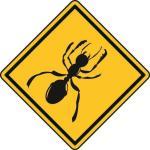 Aufkleber Vorsicht / Achtung Ameise