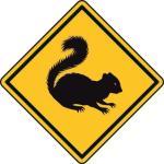 Aufkleber Vorsicht / Achtung Backenhörnchen