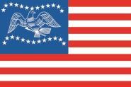 Flagge Fremont City