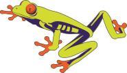 Aufkleber Frosch Motiv Nr. 5