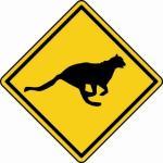 Aufkleber Vorsicht / Achtung Gepard