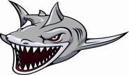 Aufkleber Hai