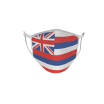 Gesichtsmaske Behelfsmaske Mundschutz Hawaii