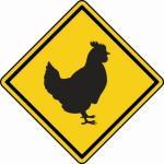 Aufkleber Vorsicht / Achtung Huhn