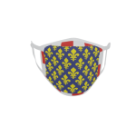 Gesichtsmaske Behelfsmaske Mundschutz Indre et Loire Department