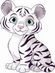 Aufkleber kleiner weißer Tiger