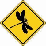 Aufkleber Vorsicht / Achtung Libelle