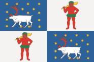 Flagge Norrbottens län