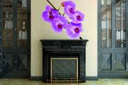 Wandtattoo Orchideen Fotografie