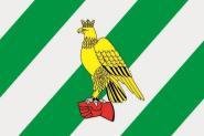 Flagge Sokolniki