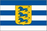 Flagge Tallinn