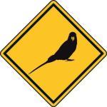 Aufkleber Vorsicht / Achtung Wellensittich