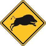 Aufkleber Vorsicht / Achtung Wildschwein