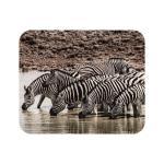 Mousepad Textil Zebras
