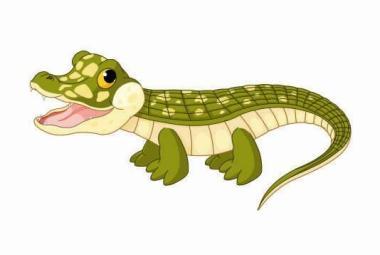 Flagge Baby Krokodil