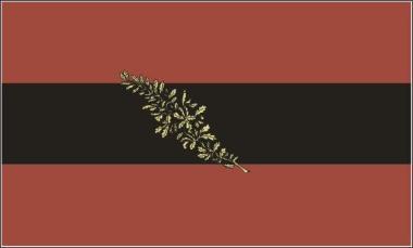 Fahne Jenaer Burschenschaft 90 x 150 cm
