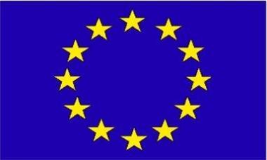 Fahne Europa 30 x 45 cm