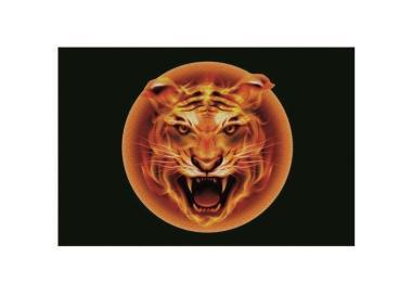 Aufnäher Patch Feuer Tiger Kopf 9 x 6 cm