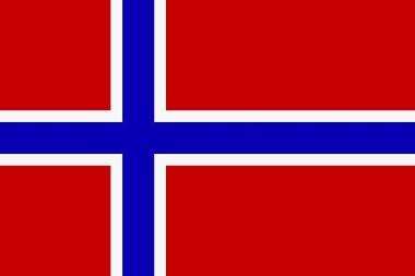 Fahne Norwegen 30 x 45 cm
