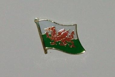 Pin Wales 20 x 17 mm