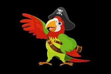 Flagge Piraten Papagei 30 x 45 cm