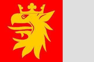 Flagge Skanes 120 x 120 cm