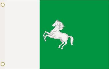 Fahne Tomsk Stadt 90 x 150 cm
