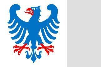 Flagge Vaermland 120 x 120 cm