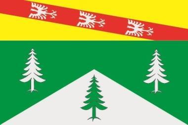 Flagge Vosges Department
