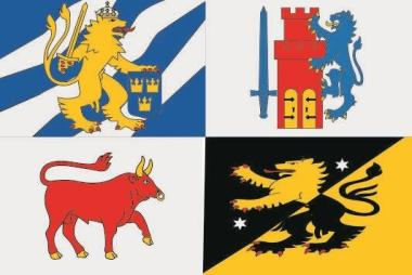 Flagge Västra Götalands län
