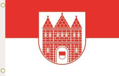 Fahne Wanzleben-Börde 90 x 150 cm