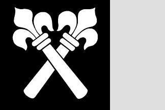 Flagge Zwingen