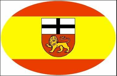 Aufkleber oval Bonn 10 x 6,5 cm
