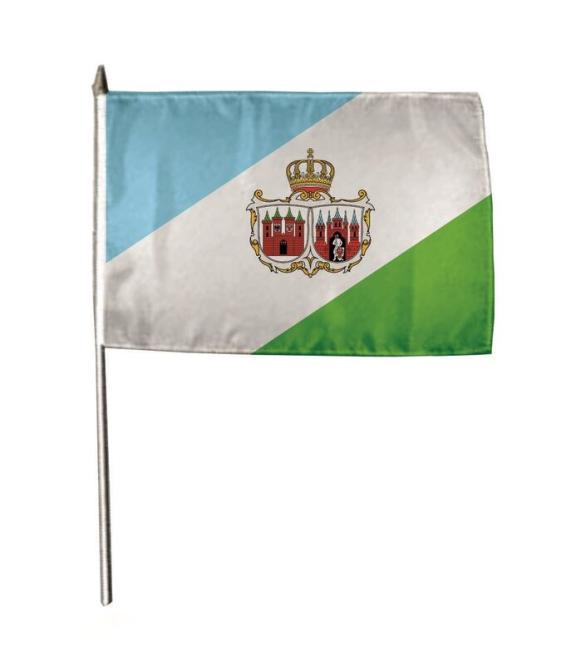 Stockflagge Brandenburg Stadt 30 x 45 cm