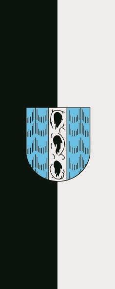 Flagge Bregenz im Hochformat