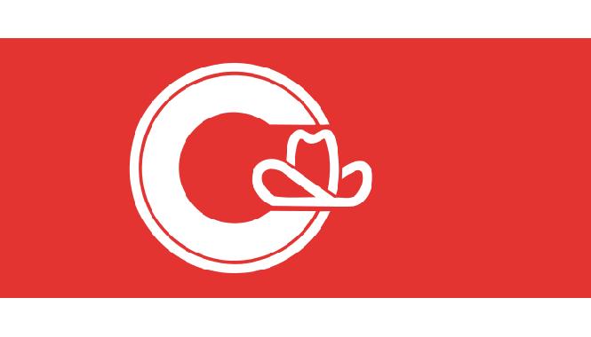 Flagge Calgary