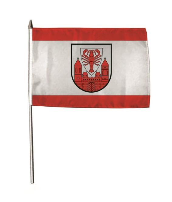 Stockflagge Cottbus 30 x 45 cm