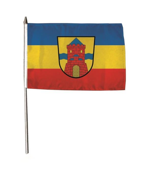 Stockflagge Delmenhorst 30 x 45 cm