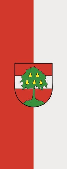 Flagge Dornbirn im Hochformat