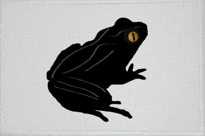 Aufnäher Frosch Motiv Nr. 10 Patch 9 x 6 cm