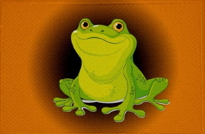 Aufnäher Frosch Motiv Nr. 13 Patch 9 x 6 cm