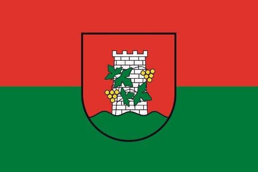 Flagge Gols (Burgenland)