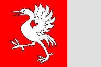 Fahne Bezirk Greyzer 120 x 120 cm