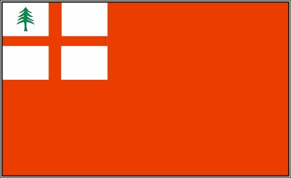 Flagge New England