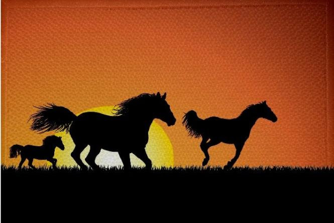 Aufnäher Pferd Motiv Nr. 22 Patch 9 x 6 cm