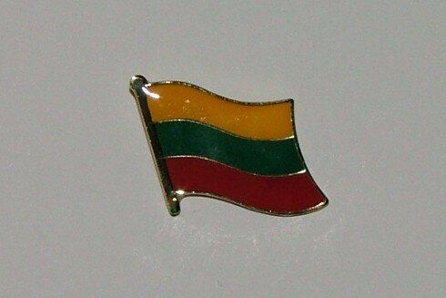 Pin Litauen 20 x 17 mm