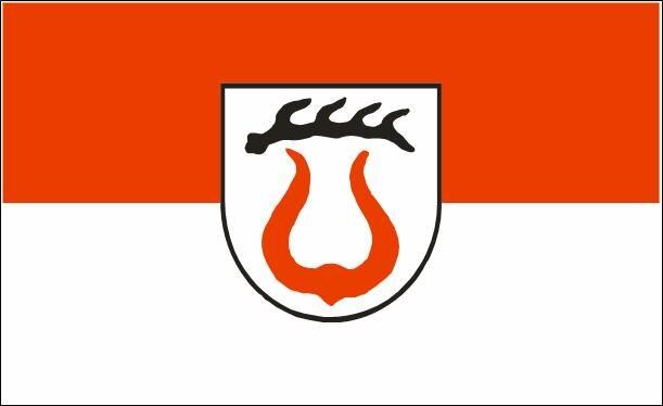 Flagge Sachsenheim