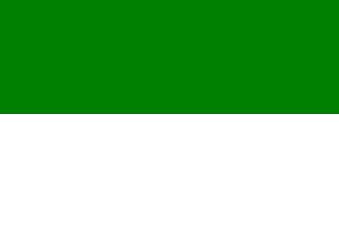 Fahne Grün-Weiss Riesenflagge 3 x 5 m