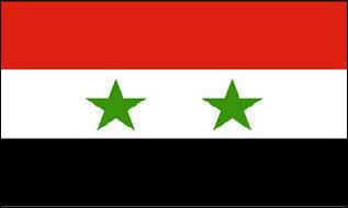 Fahne Syrien 30 x 45 cm